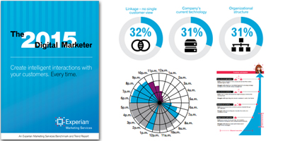 2015 Digital Marketer Report